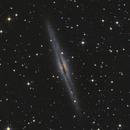 NGC 891,                                Rob Johnson