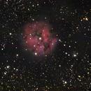 IC 5146,                                Kharan