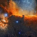 Horsehead and a Flame, IC 434 & NGC 2024,                                Wissam Ayoub