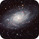 M33 in HaLRGB,                                mlewis