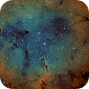 IC 1396, Elephant's Trunk Nebula,                                Chad Andrist