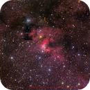 Sh2-155  - Deep Sky West Remote Observatory,                                Deep Sky West (Ll...