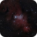 NGC2264 Cone Nebula with Christmas Tree Cluster,                                SpacemanSpiff