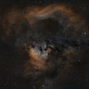 Cederblad 214, NGC7822 - SHO - 2x2 mosaic,                                Roberto Botero