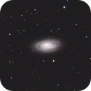 Messier 64,                                Markus A. R. Langlotz