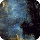NGC 7000 in Hubble palette,                                Thilo Frey