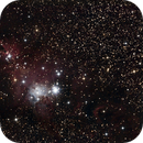 NGC2264 - The cone Nebula,                                Pierre M