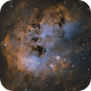 The Tadpoles (IC410),                                Mike H