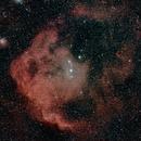Head of Orion (Meissa Nebula),                                Ray Heinle