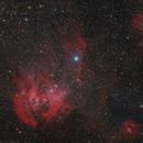 IC2948 - Lambda Centauri,                                Rodney Watters