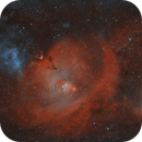 Monoceros widefield mosaic,                                MartinF