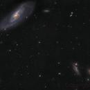 M 106 Galaxy,                                Dmitrii