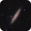 Sculptor Galaxy (NGC 253),                                Isa Mohammed