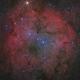 IC1396 HaLRGB,                                Ken-ichiro Tanaka