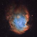 NGC 2175 / 2174,                                Gary Imm