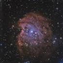 NEBULEUSE DE LA TETE DE SINGE  (NGC2175) LHOO MIXEE AVEC LRVB,                                CAMMILLERI JEAN OLIVIER