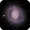 M94 The Cat's Eye Galaxy,                                Greg Nelson