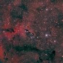 Nebulosa trompa del elefante,                                z.z