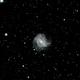 M83 - Southern Pinwheel Galaxy,                                Felipe Mac Auliffe