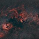 Cygnus BiColor,                                Jürgen Kemmerer