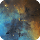 Inside the Elephant Trunk Nebula - ic1396,                                Martin Palenik