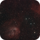 Tadpole, Flaming Star and Fly nebula mosaic,                                Benny Colyn