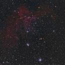 NGC7380,                                Christiaan Berger