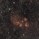 NGC6334 - The Cat's Paw,                                David Moulton
