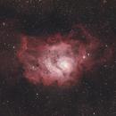 Lagoon Nebula IDAS NGS1,                                Trevor Jones