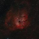 IC 410 - Tadpoles Nebula,                                Fabian Rodriguez...