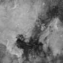 North American & Pelican Nebula in Ha,                                Adam Jaffe