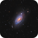 M63 The Sunflower Galaxy - an experimental project in combining data from two different telescopes,                                Andreas Eleftheriou