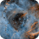 The Central Portion of the Rosette Nebula (C49) in SHO - taken in under less than ideal conditions....,                                Patrick Cosgrove