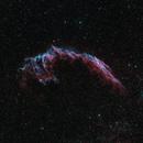 NGC 6992 East Veil,                                r.smith65585