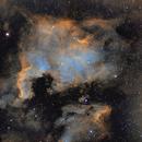 North America Nebula,                                Michael Messner