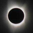 The Great American Eclipse,                                Jon Bearscove