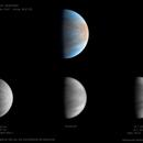 Venus,                                Raimondo Sedrani
