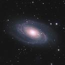 M81,                                Dan Kusz