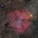 IC 1396 - Elephant's Trunk Nebula,                                sharkmelley