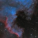 NGC 7000 + IC5070 HOO,                                nicolabugin