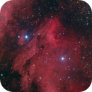 IC 5070 - The Pelican Nebula,                                Hap Griffin