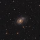 NGC772,                                Andrei Ioda