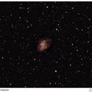 M1 - Crab Nebula / Nebulosa do Caranguejo,                                Marcelo Domingues