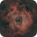 Rosette nebula,                                Matt Proulx