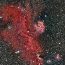 IC2177--Seagull Nebula,                                john3994