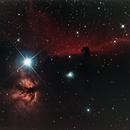 Horsehead Nebula,                                Greg Polanski