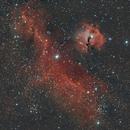 IC2177 - Seagull Nebula,                                Ahmet Kale