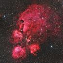 Cat's Paw Nebula,                                Casey Good