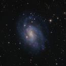 NGC 300,                                SCObservatory