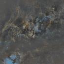 Cygnus Mosaic,                                Minseok.Chang